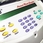 Servicio de análisis de sangre veterinarios en cualquiera de nuestra clínicas del aljarafe